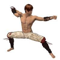 Martial Arts Fighter 3d model