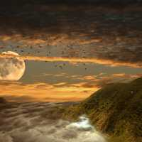 Moonrise Landscape Illustration