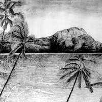 Tropical Scene with Palm trees and hills