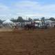 Rodeo at Cessnock showground, New South Wales, Australia