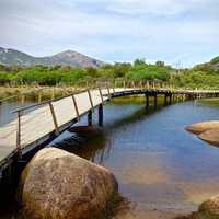 Bridge and landscape in Wilson's Promontory, Victoria, Australia