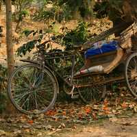 Old rickshaw at Dhaka, Bangladesh