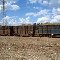 Typical sugarcane harvest transport near Ribeirão Preto, Brazil