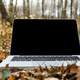 Laptop sitting on leaves on the forest floor