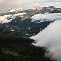Wall of Fog over the forest at Banff National Park, Alberta, Canada