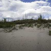 Clouds over the Sand dunes at Lesser Slave Lake Provincial Park