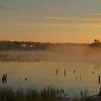 Morning at the Lake at Elk Island National Park