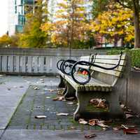 Benches in Harbour Green Park in Vancouver, British Columbia, Canada