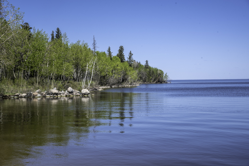 scenery of the lake winnipeg shoreline with trees at hecla