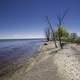 Shoreline of Lake Winnipeg at Hecla Provincial Park