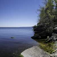 Trees on the calm shoreline in Hecla Provincial Park