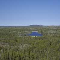 Hill and Lakes in the Middle of the Pine Forest on the Ingraham Trail