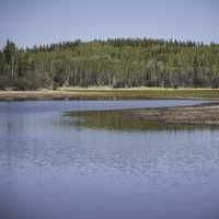 Lakeside landscape with trees on the Ingraham Trail