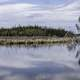 Landscape of Clear lake of trees under clouds on the Ingraham Trail