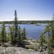 Looking at Vee Lake on a Clear Day with pine trees in Yellowknife