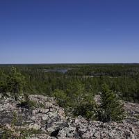 Overlook on the pine forest on the Ingraham Trail