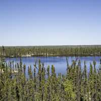 Pond in the forest overlook on the Ingraham Trail