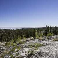 Prelude lake with trees and forest landscape on the Ingraham Trail