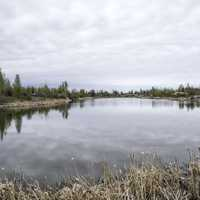 Wetlands and Lakes on the Ingraham Trail