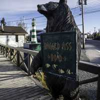 Bear Holding a Ragged-Ass road sign, Yellowknife
