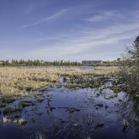 Marshland and wetlands under the skies in Yellowknife
