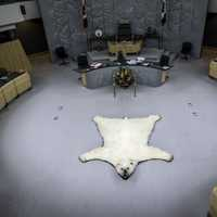 Polar Bear Rug in the Congress Room in Yellowknife