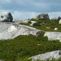 Landscape with Rocks and Grass