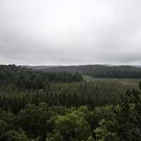 Hills and Forest landscape at Algonquin Provincial Park, Ontario