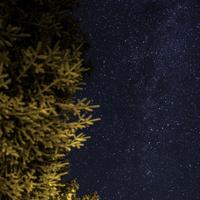 Stars and Galaxy at night in Algonquin Provincial Park, Ontario