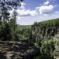 Trees and Canyon landscape at Eagle Canyon, Ontario