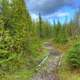 The Hiking Trail at Lake Nipigon, Ontario, Canada