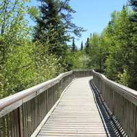 The walkway at Ouimet Canyon, Ontario, Canada