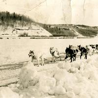 Dog Sled Race in 1954 in Flin Flon, Saskatchewan