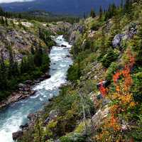 Beauty of the Yukon Outdoors