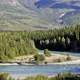 Landscape with river and forest in Yukon Territory, Canada