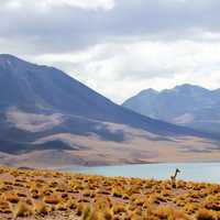 Landscape of mountains, clouds, desert, and lake in Chile