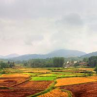 Farms in Anhui, China