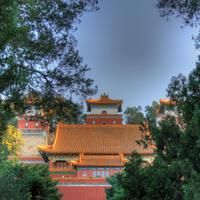 Temple through the trees in Beijing, China
