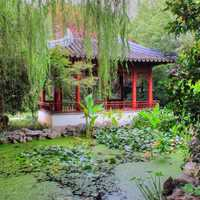 House and pond in Garden in Nanjing, China