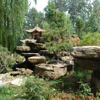 Rocks and Trees in a park in Jinan, Shangdong, China