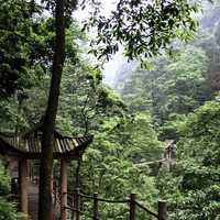 Wooden bridgewalk over the Crystal Stream in Mount Emei, Sichuan, China