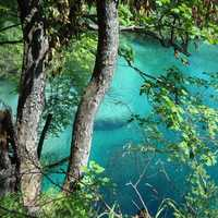 Turquiose Lake through the trees at Plitvice Lake National Park, Croatia