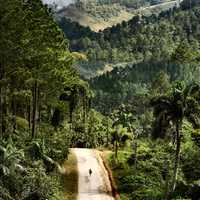 Country road landscape in Cuba