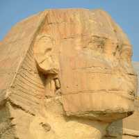 Face of Sphinx without Nose in Giza, Egypt