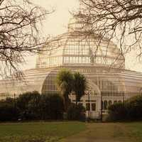 The Palm House In Sefton Park Liverpool, England