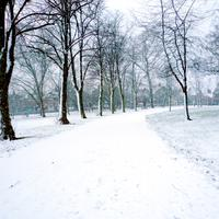 Snow in Spinney Hill Park in Leicester, England