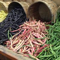 Different Colored String beans