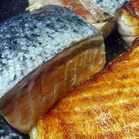 Grilled Salmon Fish Food