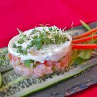 Salmon tartare fish fancy