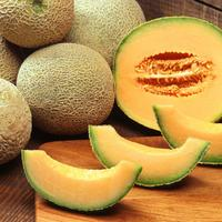 Sliced Cantaloupe fruit